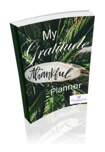 Gratitude Planner | Phenomenal Image